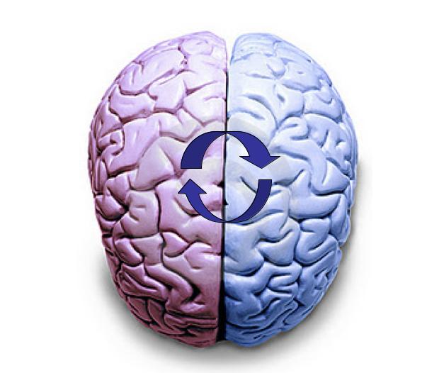 Resultado de imagen de sincronizar hemisferios cerebrales